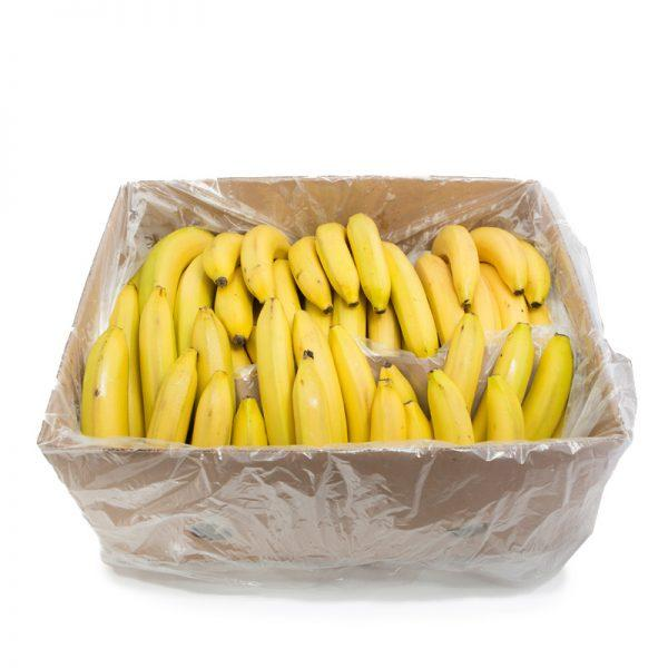 Cavendish Banana (Box)
