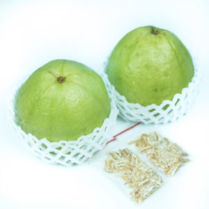 Guava (Large)