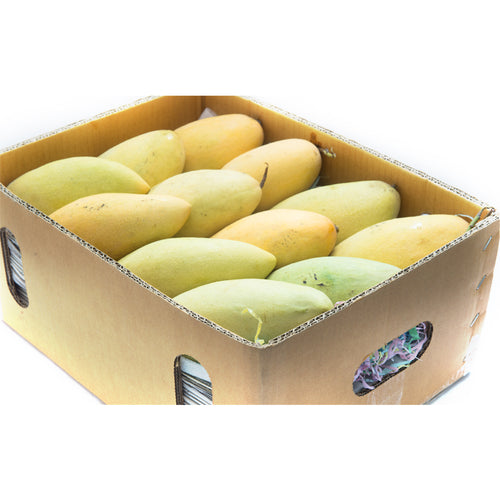 Honey Mango (Box)