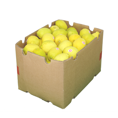 Lemon (Box)