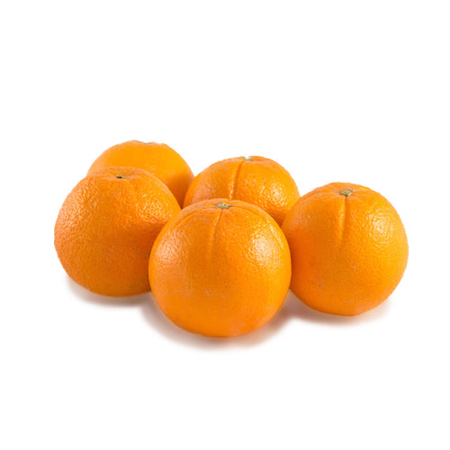 Navel Orange Medium