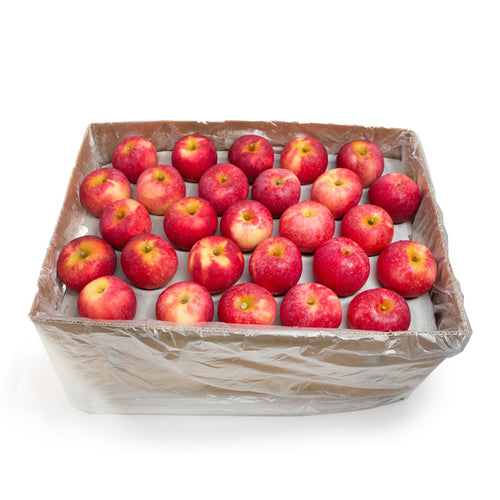 Queen Apple (Box)