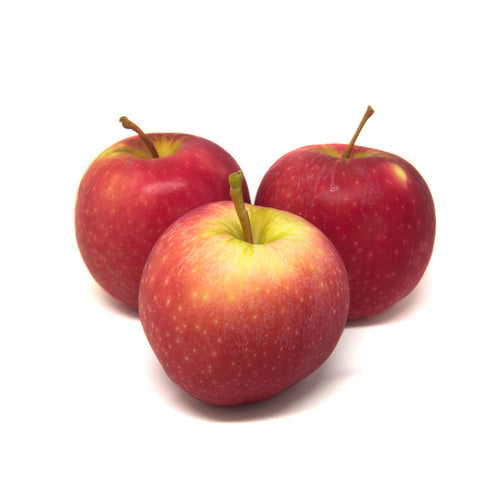 Queen Apple (Medium)
