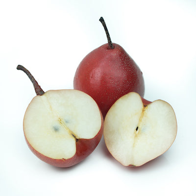 Red Angel Pear