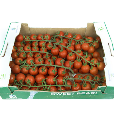 Tomato on Vines (Box)