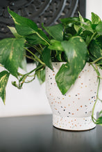 "Load image into Gallery viewer, 7"" Funnel Planter - Pearl Terrazzo"