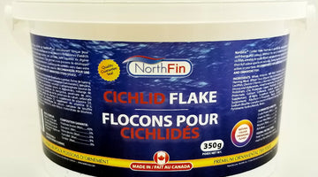 NORTHFIN FLAKE IS HERE!!!  CELEBRATION SALE!!!