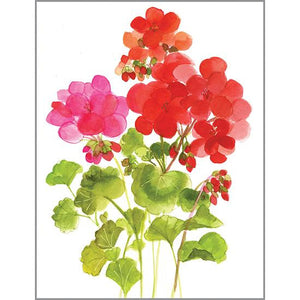 Blank Note Card  - Geraniums, Gina B Designs