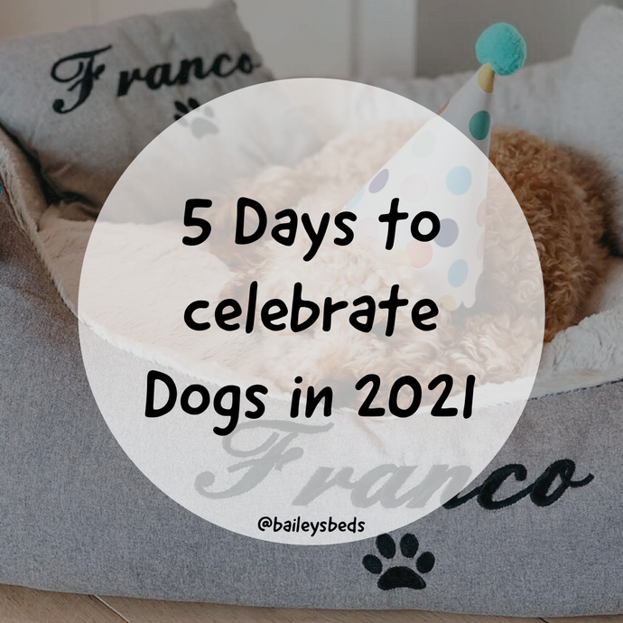 5 Special Days to Celebrate Dogs in 2021