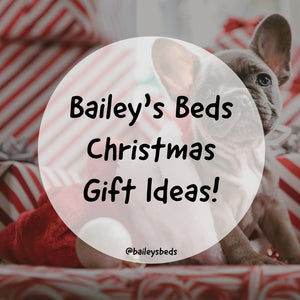Bailey's Beds Top 8 Christmas Gift Ideas for Dogs!