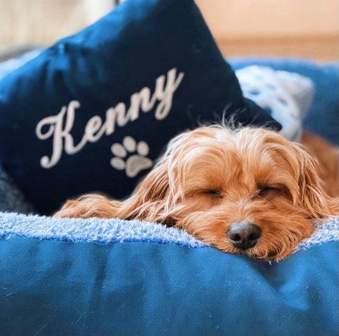 """Blue personalised dog bed - dog name embroidered """"Kenny"""""""