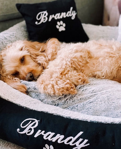 dog sleeping in personalised dog bed