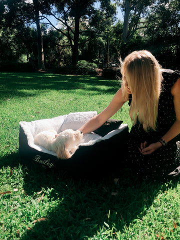 Bailey & Lucy, Photoshoot at the Dog Park, Personalised Dog Beds