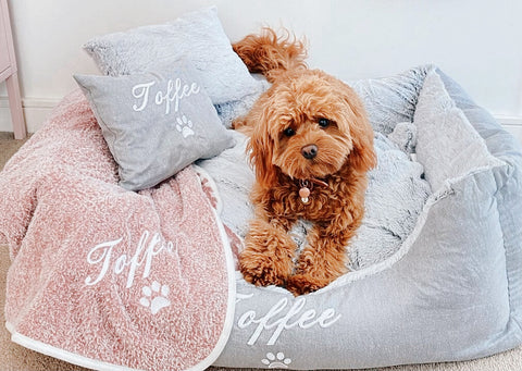 Grey Fluffy Personalised Dog Bed and Pink Personalised Dog Blanket, Cavoodle, Toffee