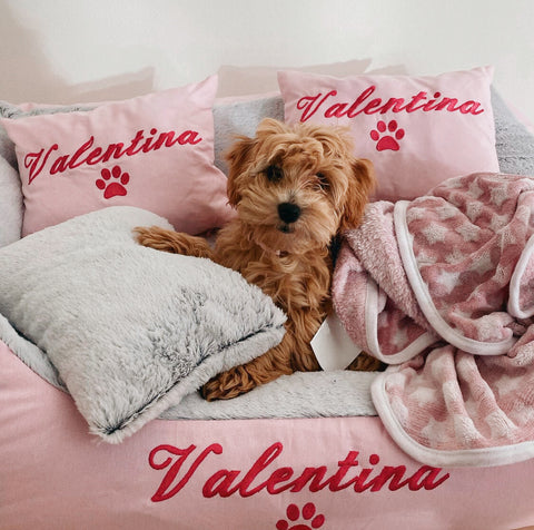 Pink Fluffy Personalised Dog Bed, Cavoodle Puppy, Valentina