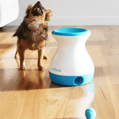 Automatic Ball Dispenser, Dog Toy, Puppy Toys