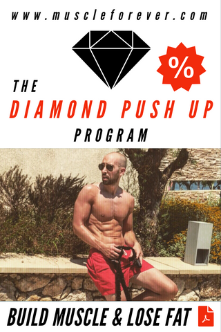 The Push Up Program