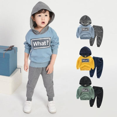 Baby Boy 2 Pc Hoodie Sweater Pant Set