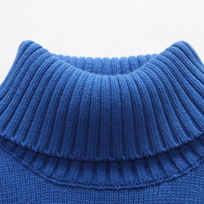 Cool Turtle Neck Blue Sweater for Toddler Boys