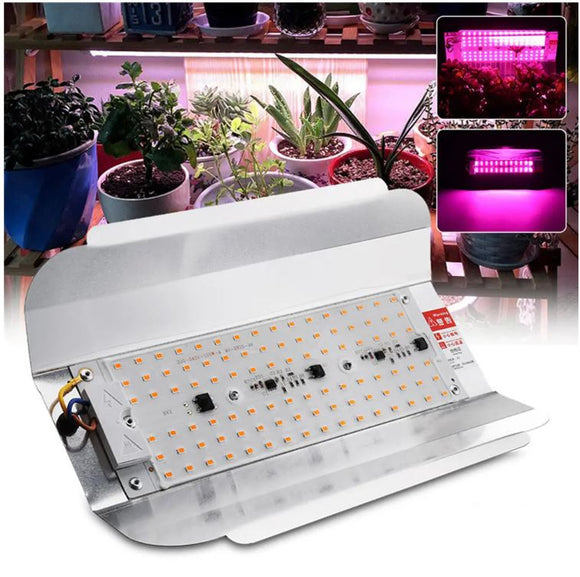 LED GROW LIGHT 50W 220V