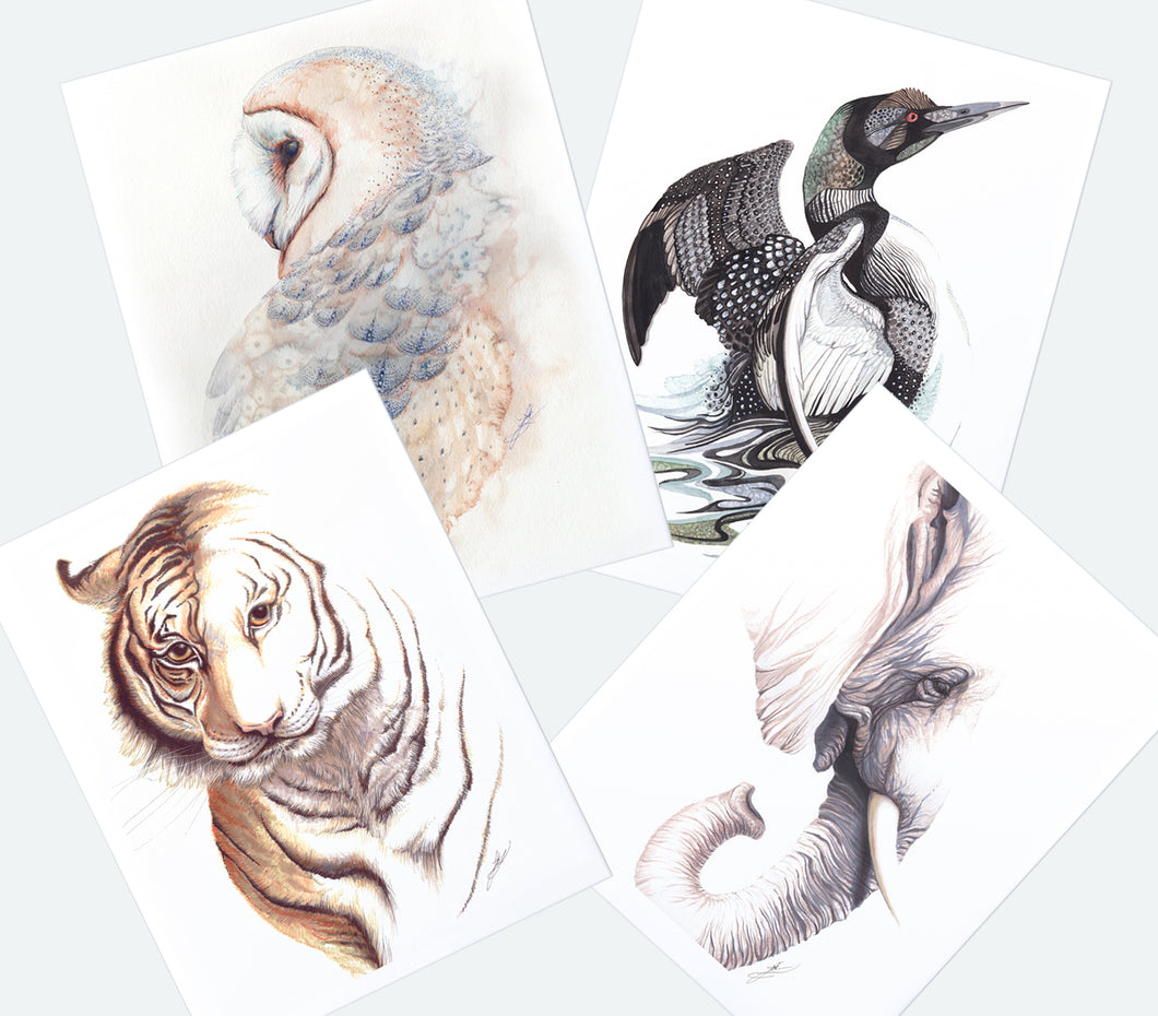 Wildlife Bundle Print Deal