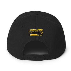 Protected Apparel Snapback Hat - Science On Supply