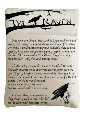 The Raven Book Sleeve