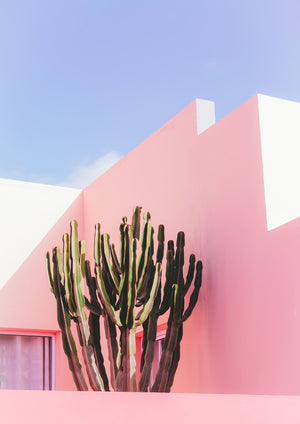 MILLENNIAL PINK - HONEYMOON HOTEL