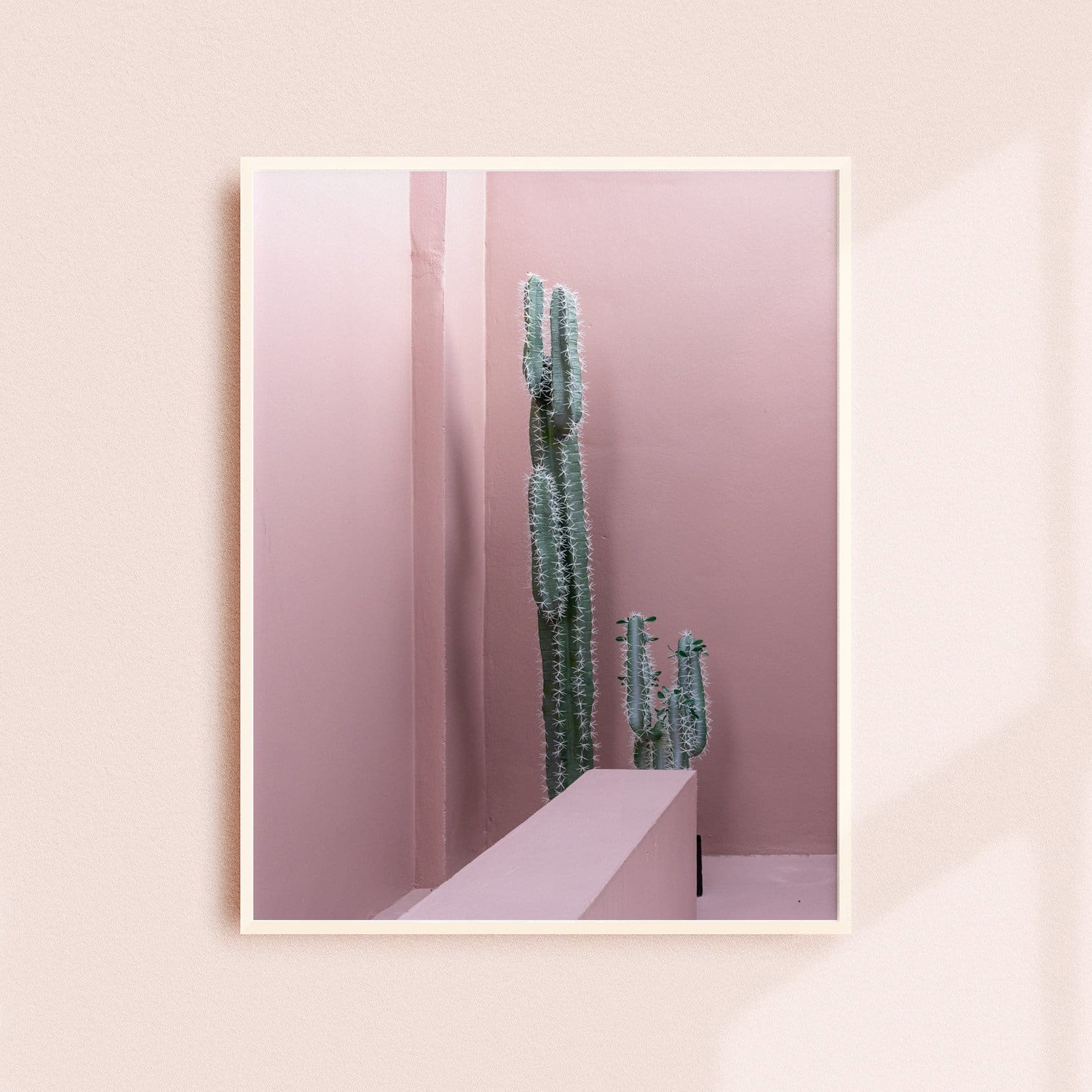 PRICKLY CACTUS - HONEYMOON HOTEL