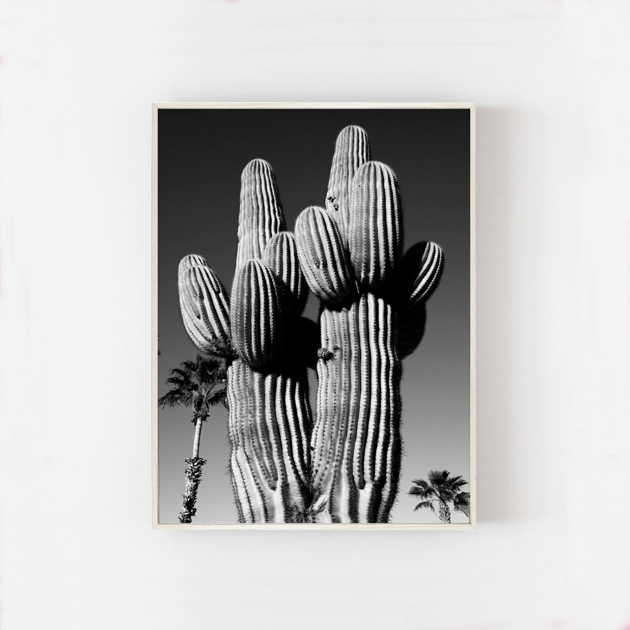 SAGUARO PALM - HONEYMOON HOTEL