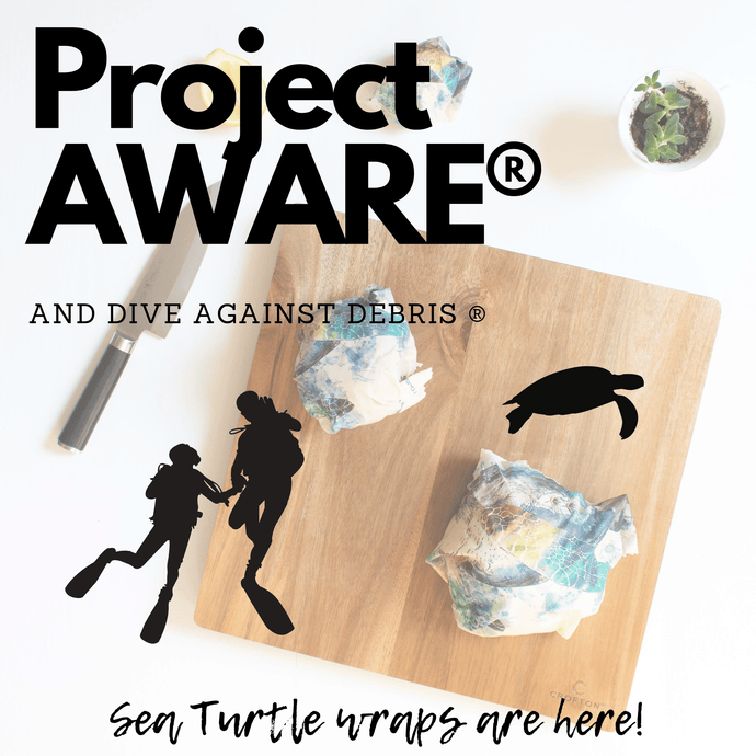 Project AWARE and Dive Against Debris
