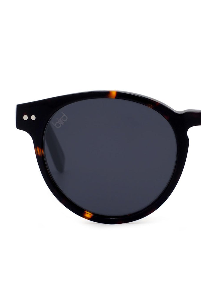Tawny Small Ethical & Eco-Friendly Acetate Sunglasses