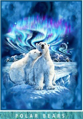 "Royal Plush Extra Heavy Queen Size Mink Blanket - Polar Bears and Northern Lights (79"" x 85"")"