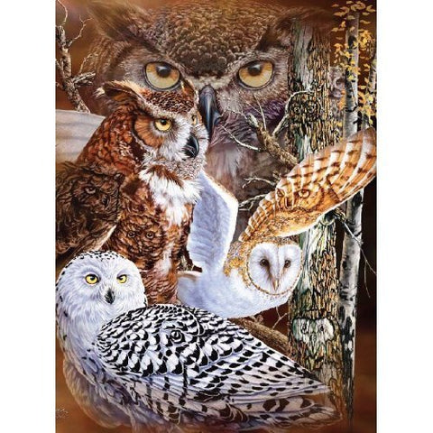 11 Owls Super Soft Plush Queen Size Blanket by Gardner