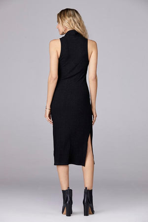 Black David Lerner Sleeveless Long Turtleneck Dress