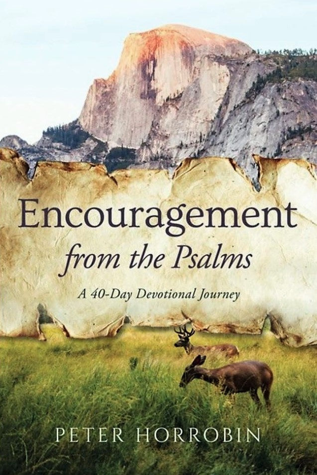 Encouragement from the Psalms
