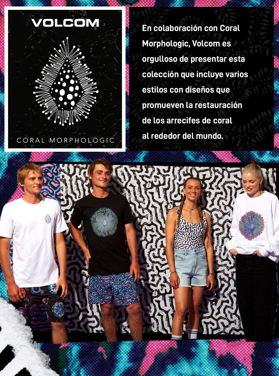 volcom x coco ho collection
