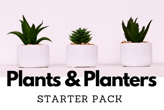 Interior decoration with Plants and Plant Pots & Planters Starter Pack