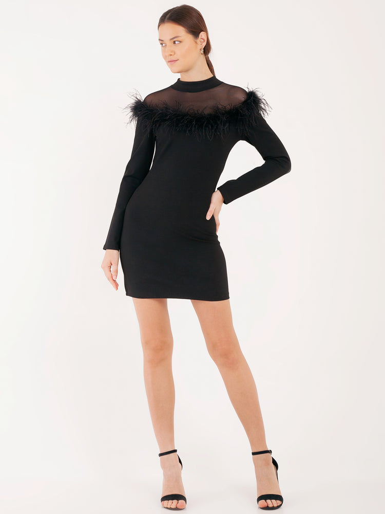 Fernanda Feathered Long Sleeved Dress in Black