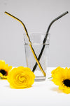Metal Reusable Straw Set