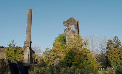 Spot Watch: Warkworth Cement Works