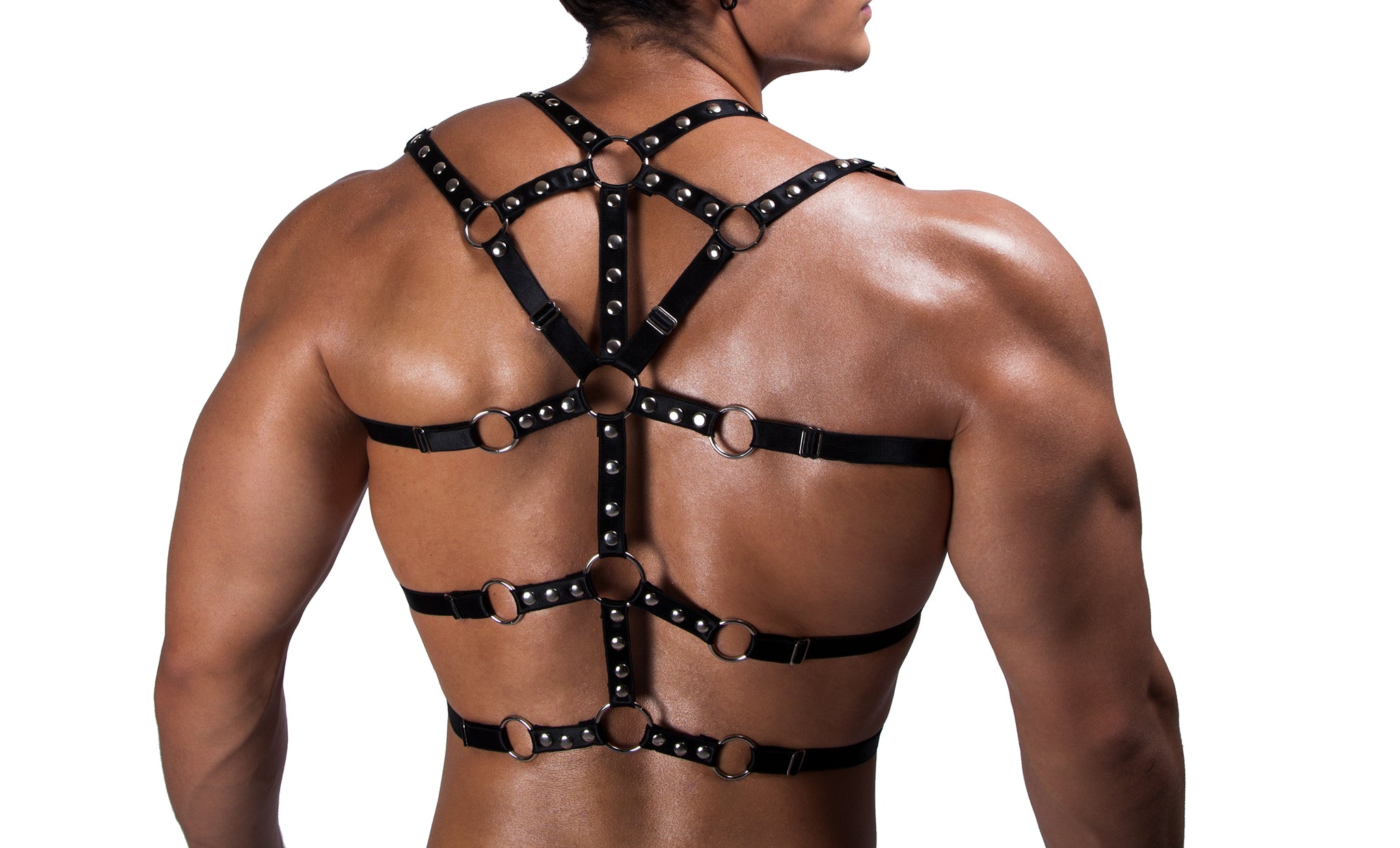 HARNESS DANNY BLACK