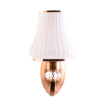 Load image into Gallery viewer, Wall Light Fixtures with Glass Shade, Bronze