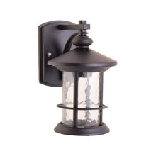 Load image into Gallery viewer, One-Light Outdoor Wall Lantern with Clear Glass, Black