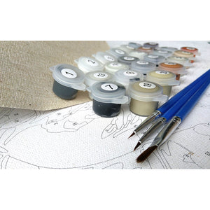 Drawing Painting By Numbers Kits