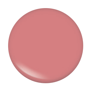 Lip Gloss - Color Pinky