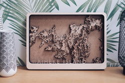 Waiheke Island New Zealand Topographic Map