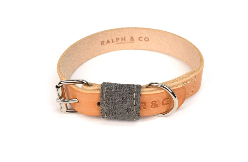 Leather Dog Collar - Penn