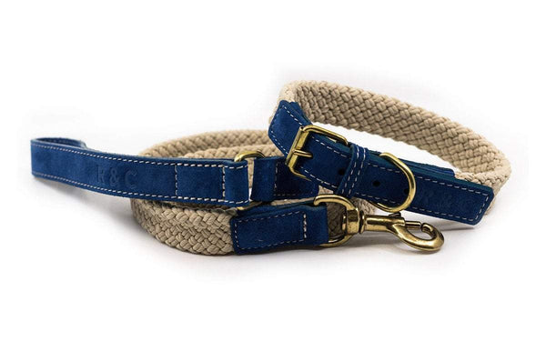 Ralph and Co Flat Rope Dog Lead - Royal blue