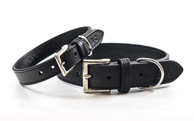 Ralph and Co Leather Dog Collar - Sorrento
